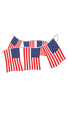 Cloth American Flag Pennant