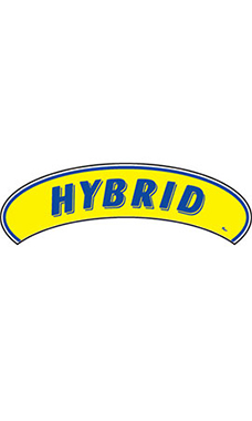 "Arch Windshield Slogan Sticker - Blue/Yellow - ""Hybrid"""