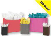Colored Paper Shopping Bags 100 Count