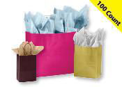 Glossy Paper Shopping Bags 100 Count