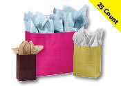 Glossy Paper Shopping Bags 25 Count