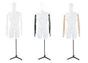 Male Partial Body Mannequins
