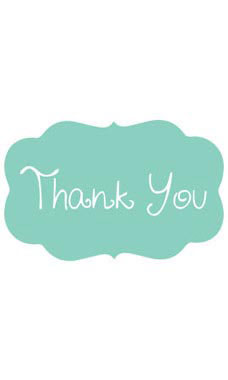 Decorative Aqua Thank You Embellishment