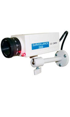 Simulated Surveillance Camera with Blinking Light
