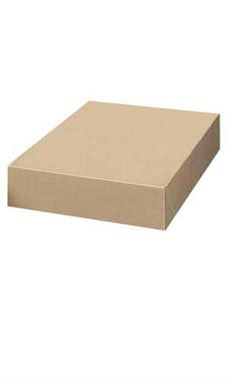 19 x 12 x 3 inch Kraft Apparel Boxes