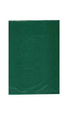 Extra Small High Density Green Plastic Merchandise Bags - Case of 1,000