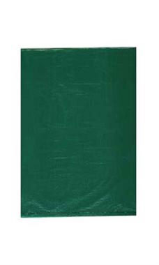 Small High Density Green Plastic Merchandise Bags - Case of 1,000