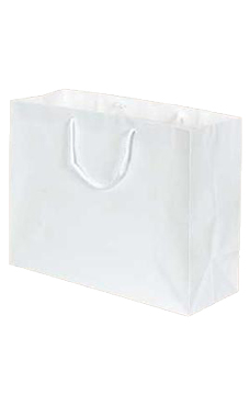 Large Glossy White Euro Tote Bags - Case of 100