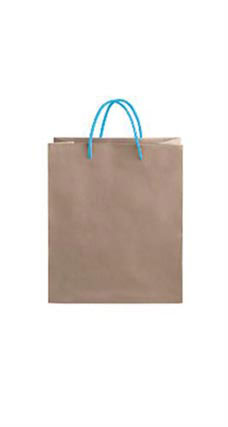 Medium Kraft Premium Folded Top Paper Bags Light Blue Rope Handles