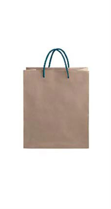 Medium Kraft Premium Folded Top Paper Bags Navy Rope Handles