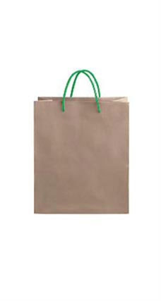 Medium Kraft Premium Folded Top Paper Bags Kelly Green Rope Handles