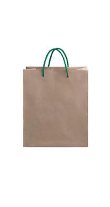 Medium Kraft Premium Folded Top Paper Bags Dark Green Rope Handles