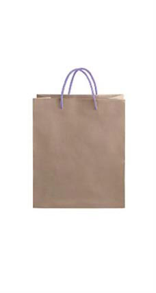 Medium Kraft Premium Folded Top Paper Bags Purple Rope Handles