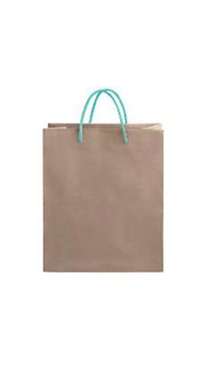 Medium Kraft Premium Folded Top Paper Bags Turquoise Rope Handles