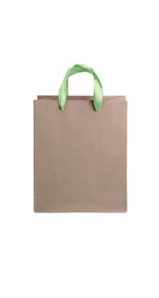 Medium Kraft Premium Folded Top Paper Bags Neon Green Ribbon Handles