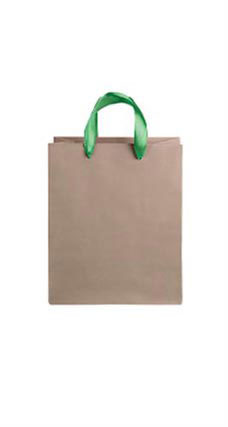 Medium Kraft Premium Folded Top Paper Bags Kelly Green Ribbon Handles
