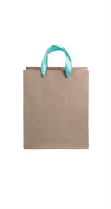 Medium Kraft Premium Folded Top Paper Bags Turquoise Ribbon Handles