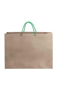 Large Kraft Premium Folded Top Paper Bags Kelly Green Rope Handles