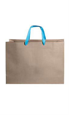 Large Kraft Premium Folded Top Paper Bags Light Blue Ribbon Handles