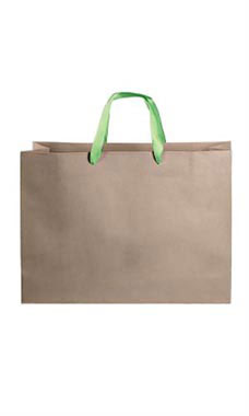 Large Kraft Premium Folded Top Paper Bags Light Green Ribbon Handles
