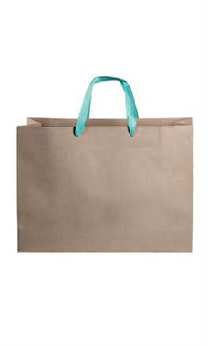 Large Kraft Premium Folded Top Paper Bags Turquoise Ribbon Handles