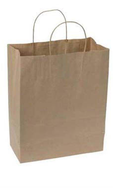 Natural Kraft Paper Shopping Bags - Case of 250