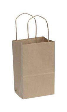 Small Natural Kraft Paper Shopping Bags - Case of 250