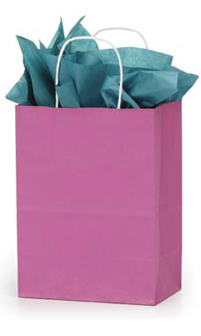 Medium Magenta Paper Shopping Bags - Case of 100
