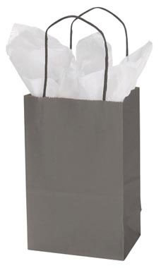 Small Storm Gray Paper Shopping Bags - Case of 100