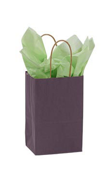 Small Plum Paper Shopping Bags - Case of 100