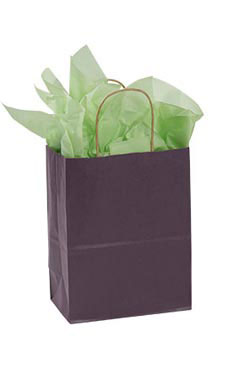 Medium Plum Paper Shopping Bags - Case of 25