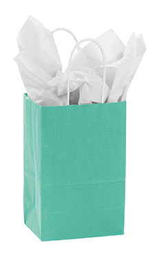 Small Turquoise Paper Shopping Bags - Case of 100