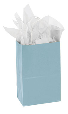 Small Powder Blue Paper Shopping Bags - Case of 25