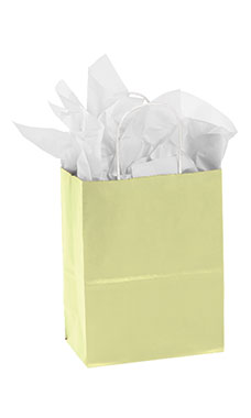Medium Ivory Paper Shopping Bags - Case of 100