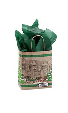 Medium Street Scene Paper Shopping Bags - Case of 25