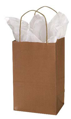Small Metallic Copper Paper Shopping Bags - Case of 100