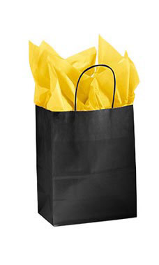 Medium Glossy Black Paper Shopping Bags - Case of 25