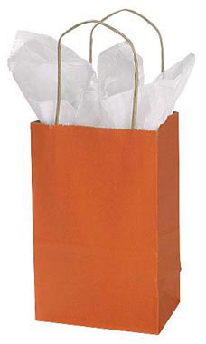 Small Burnt Orange Paper Shopping Bags - Case of 100