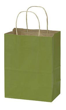 Medium Rain Forest Paper Shopping Bags - Case of 100