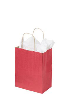 Medium Red Paper Shopping Bags - Case of 100