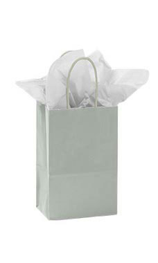 Small Glossy Silver Paper Shopping Bags - Case of 100