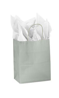 Medium Glossy Silver Paper Shopping Bags - Case of 25