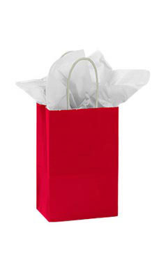 Small Glossy Red Paper Shopping Bags - Case of 25