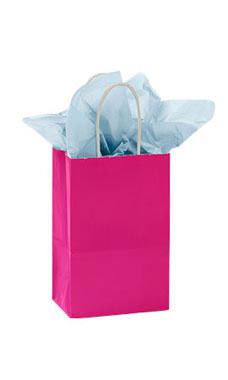 Small Glossy Cerise Paper Shopping Bags - Case of 25