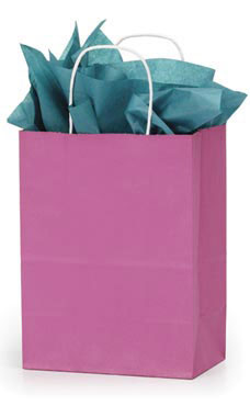 Medium Magenta Paper Shopping Bags - Case of 25