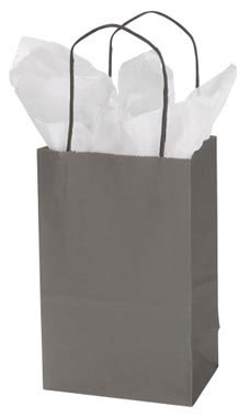 Small Storm Gray Paper Shopping Bags - Case of 25