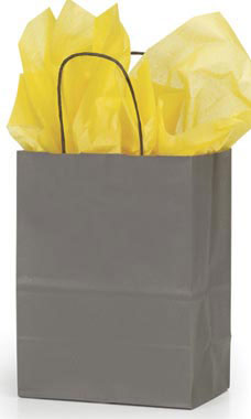 Medium Storm Gray Paper Shopping Bags  - Case of 25