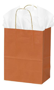 Medium Burnt Orange Paper Shopping Bags - Case of 25