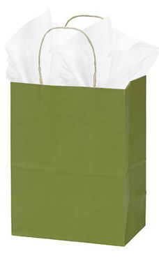 Medium Rain Forest Green Paper Shopping Bags - Case of 25