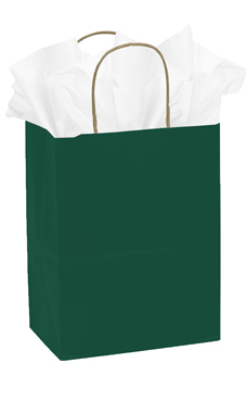 Medium Green Paper Shopping Bags - Case of 25